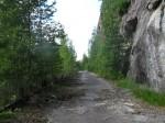 Old, unused road