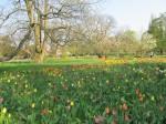 Lund Botanical Garden