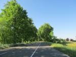 Southern Hungary - flat