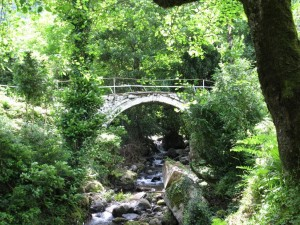 A historic arch bridge