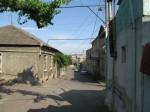 Gori backstreet