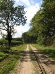 'Alter Postweg' near Steinkimmen