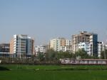 Rice fields between hotels, Cox's Bazar